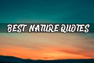 perfect nature captions archives best status best quotes and