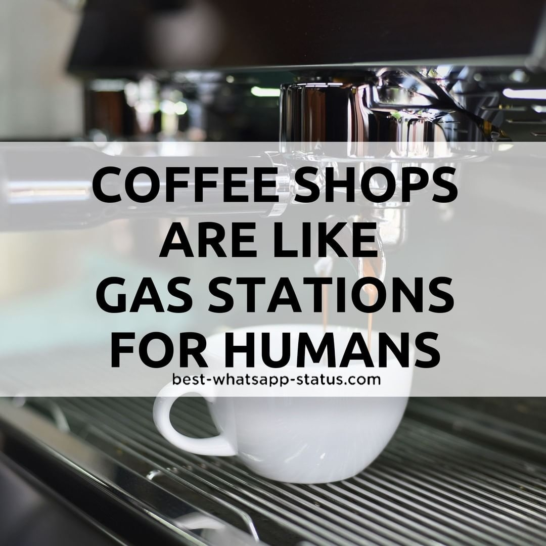 100 Best Quotes For Coffee Lovers Hot Whatsapp Status For Coffee
