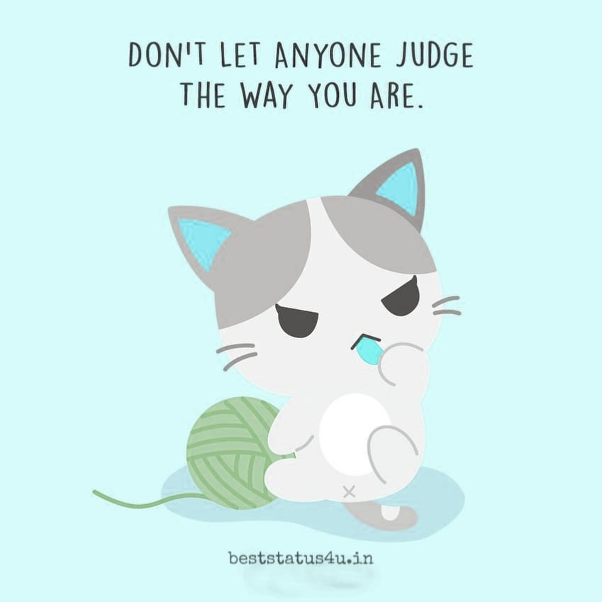 100 Best Quotes For Cat Lovers Adorable Whatsapp Status For Cats